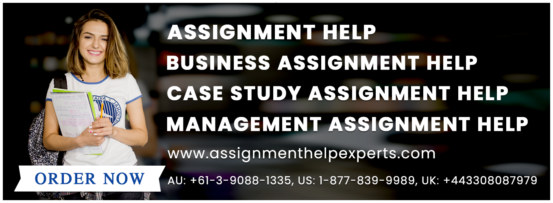 Assignment help experts uk