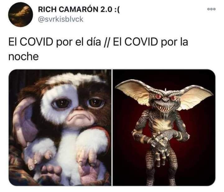 Virus Español