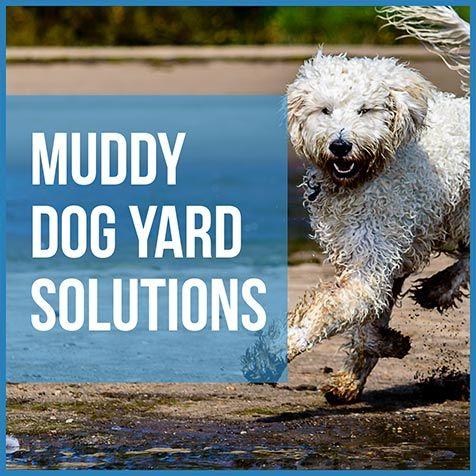 Muddy Dog Yard Solutions: 5 Solutions Worth Considering ...