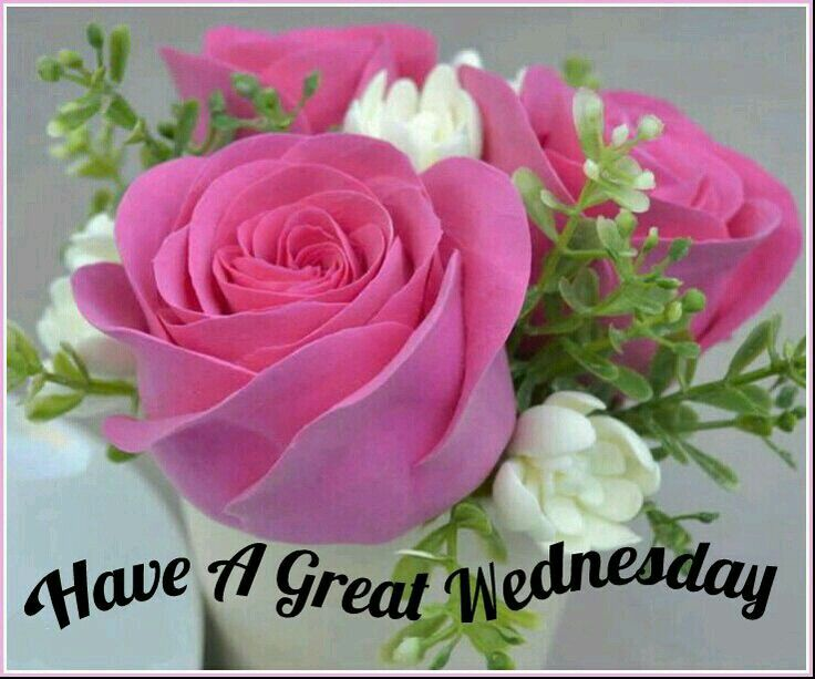 Image result for Images of have a great Wednesday