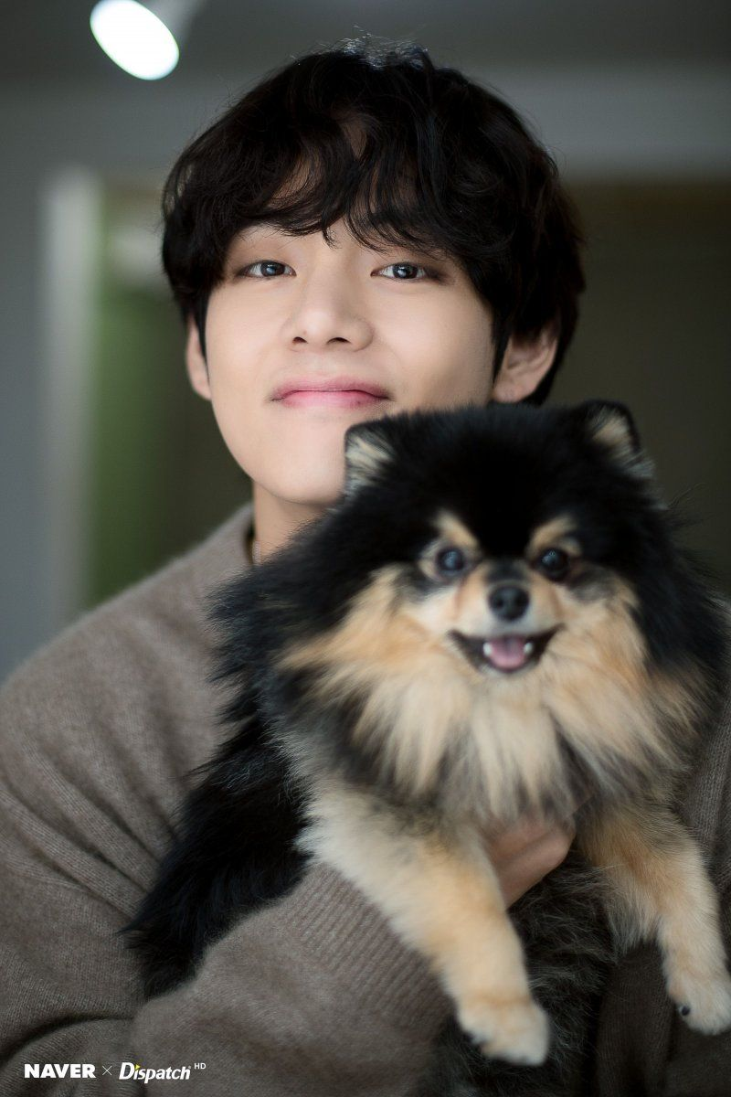 191230 BTS's V and his dog Yeontan Birthday photoshoot by Naver x Dispatch.