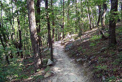 Sawnee Mountain Hiking In Georgia Forsyth County One Day Trip