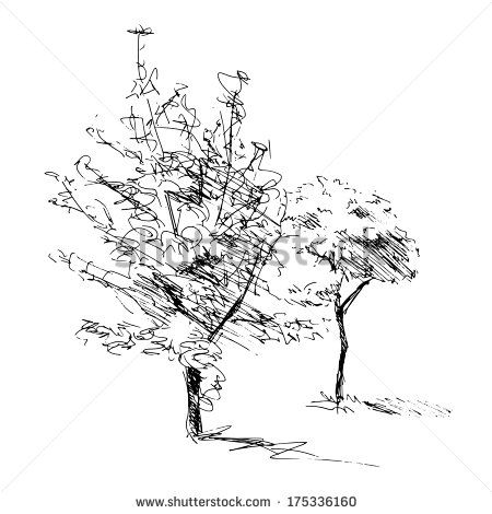 Sketch of two trees. | House Plan | Pinterest