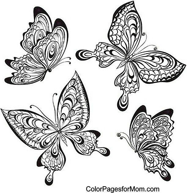 Pin de Tonya Walters en coloring   Pinterest   Bordado