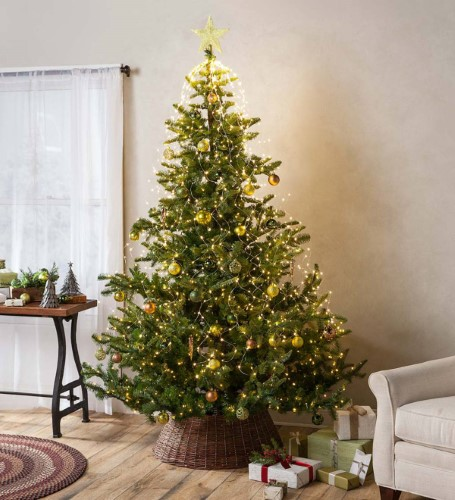 75\u0027 pre-Lit Nordmann Fir Christmas Tree with 8 Function LEDs, 68