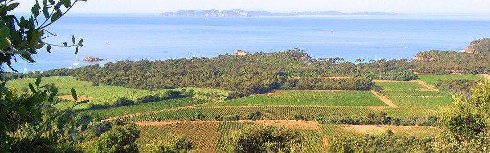 Route des vins de Provence - Visites et Dégustation des vins de Provence