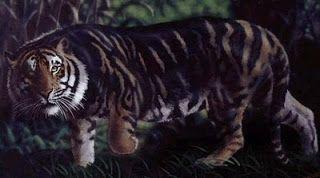 Pin On Animals Wild Cats Panthera