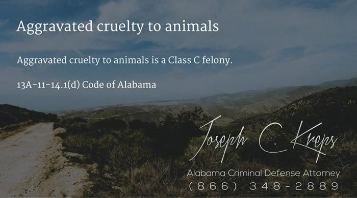 13A-11-14.1(d) Code of #Alabama - Aggravated cruelty to animals  Aggravated cruelty to animals is a Class C felony.  #Criminal Defense #Lawyer #AL #KLF