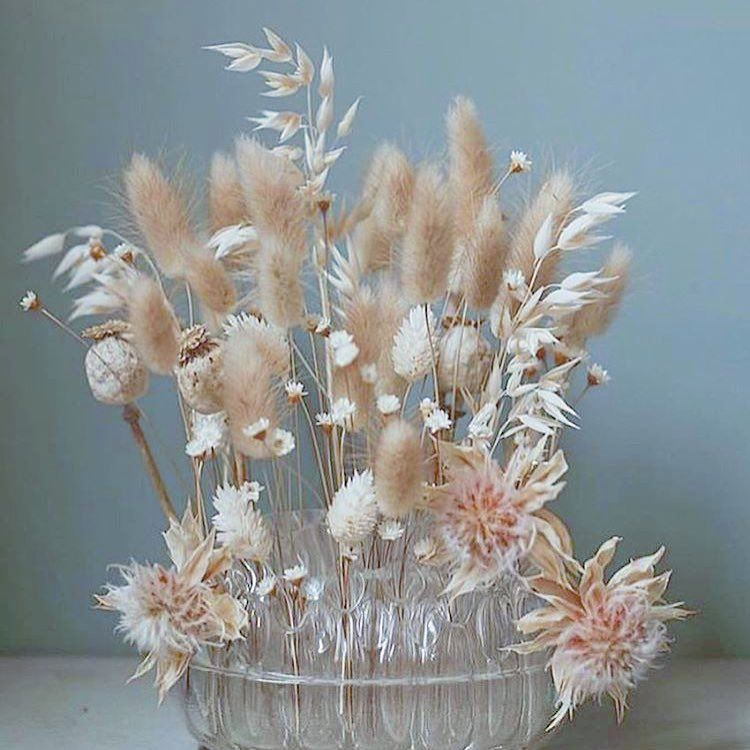 """Premium Dried Flowers on Instagram """"Little by little sundays"""" is part of Flowers - 342 Likes, 1 Comments  Premium Dried Flowers (@floralkokoro) on Instagram """"Little by little sundays"""""""