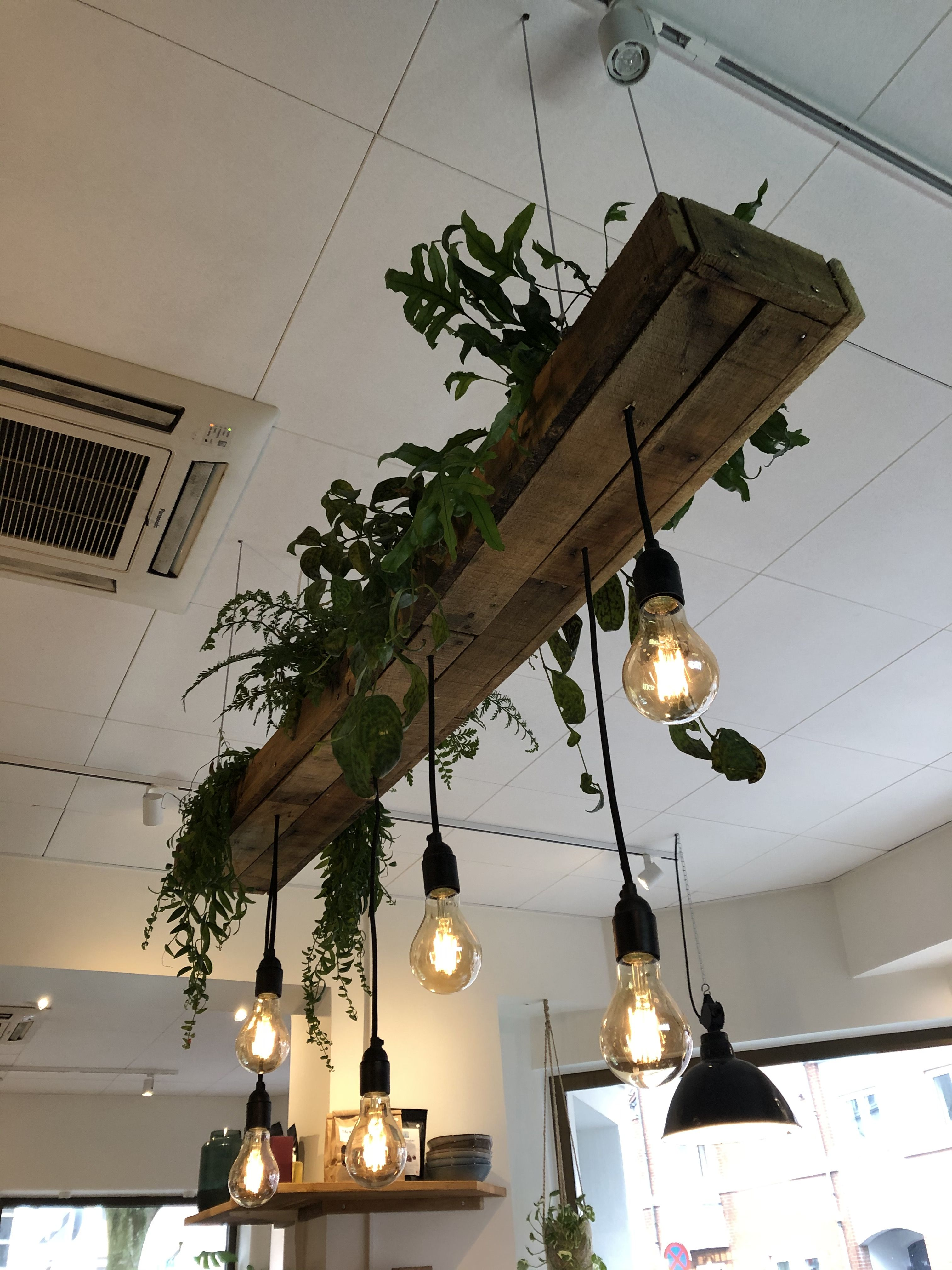Pin By Pace Pattern On Lighting House Interior Decor House Plants Decor House Design
