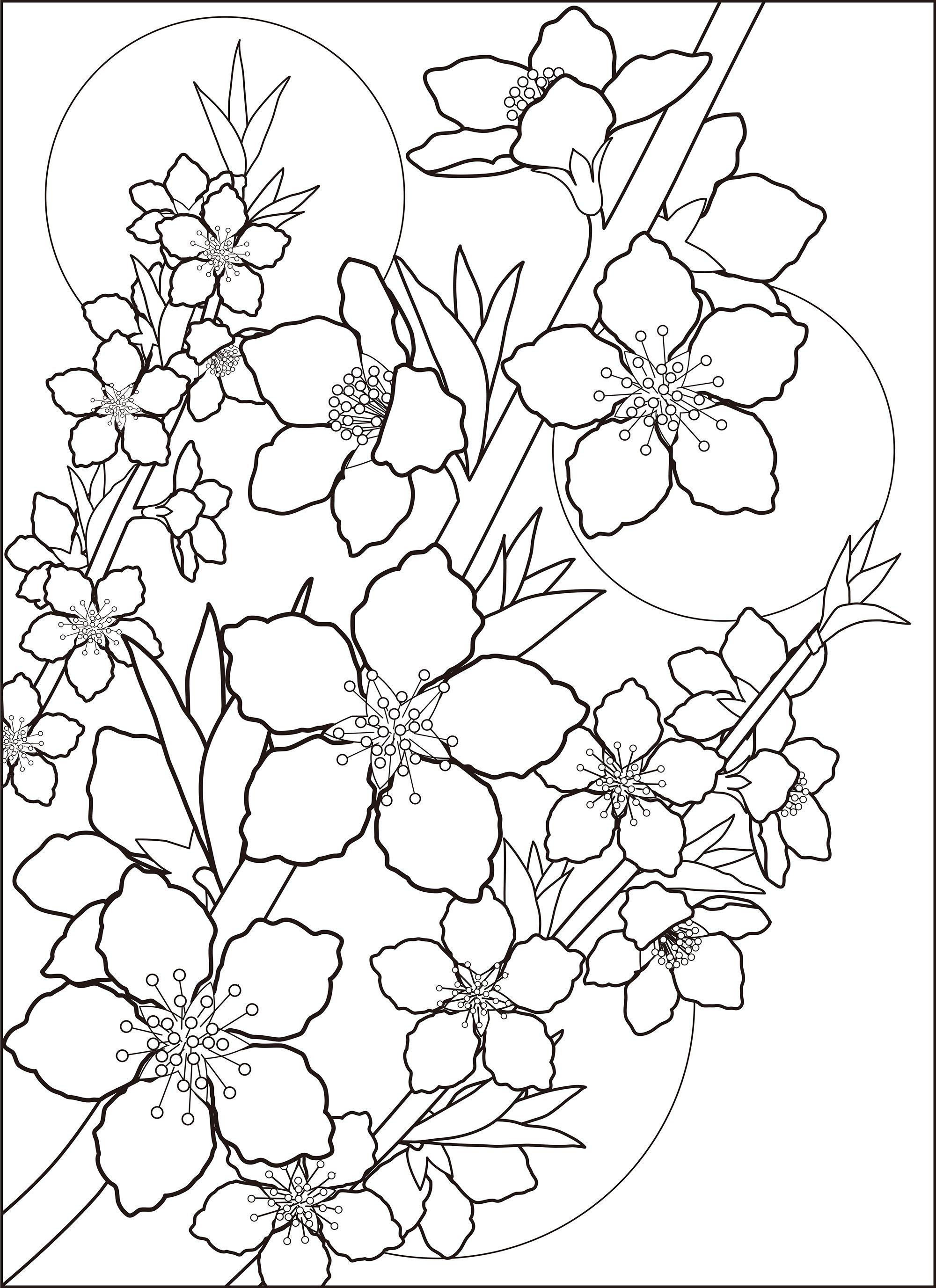 レク素材 桃の花 介護レク広場 レク素材やレクネタ 企画書 の無料ダウンロード 花の塗り絵 塗り絵 無料 花 桜 デザイン イラスト