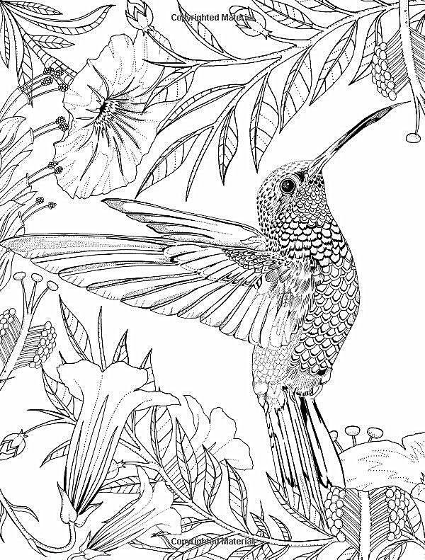 Pin de Lena E en Colouring pages | Pinterest | Flores gigantes ...