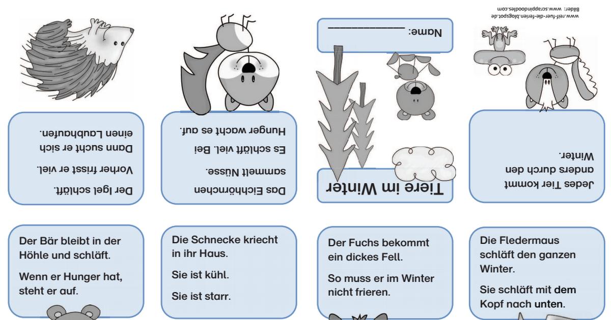 Waldtiere Faltbuchlein Pdf Reif Fur Die Ferien Waldtiere Sachunterricht Grundschule