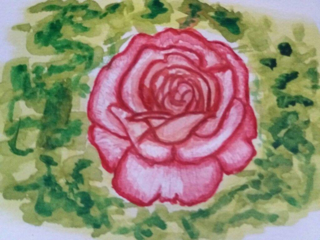 Aquarelle Crayon Aquarellables Rose Printemps Aquarelle