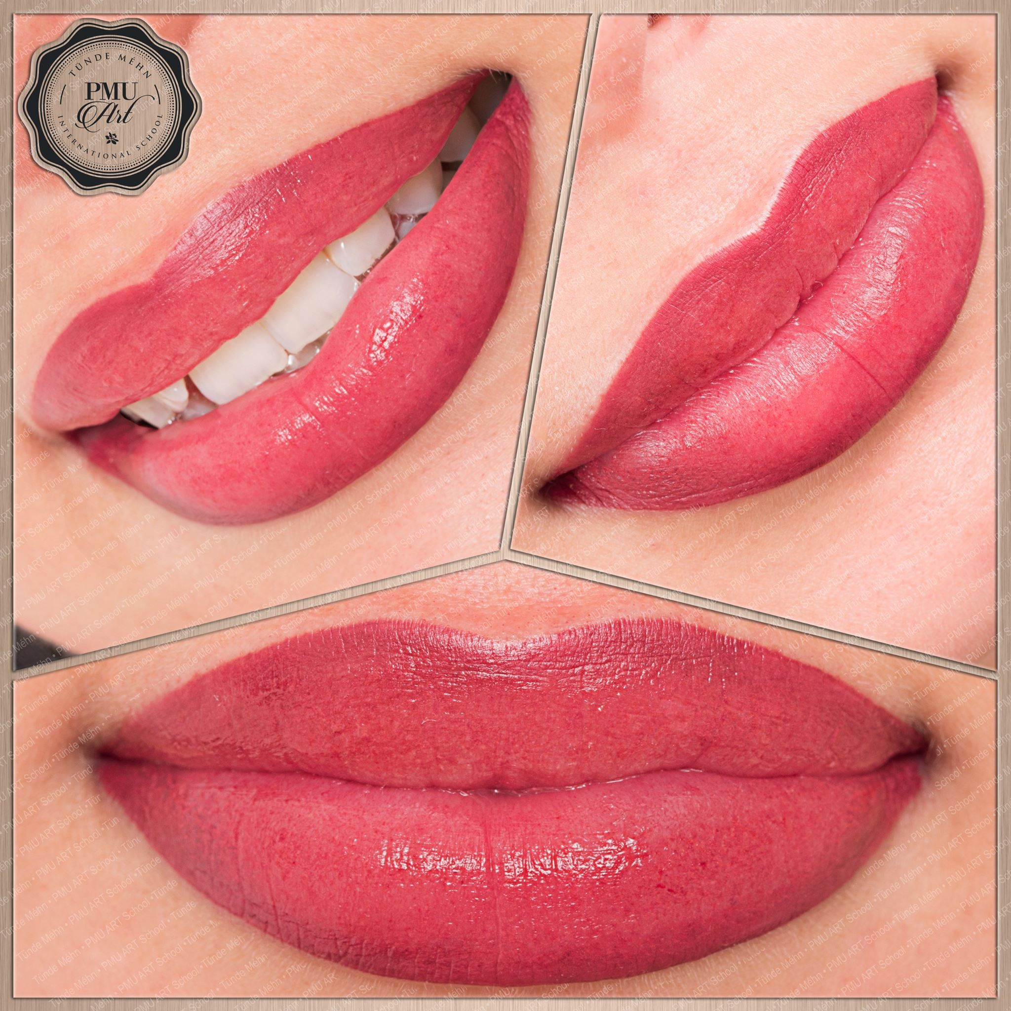 Pmu Full Shade Lip Tattoo Makeup Lip Color Tattoo Permanent