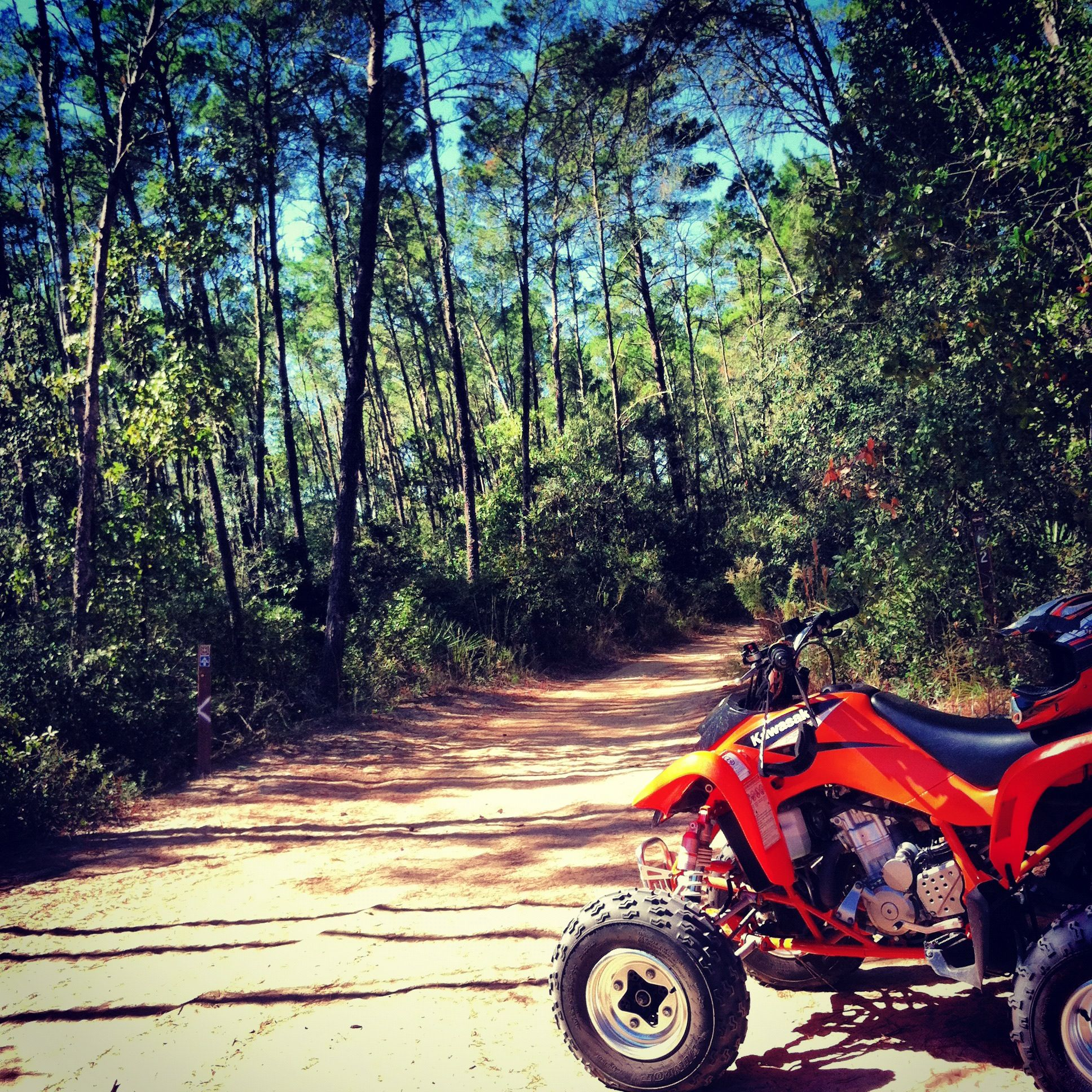 Four Wheeling In The Ocala National Forest