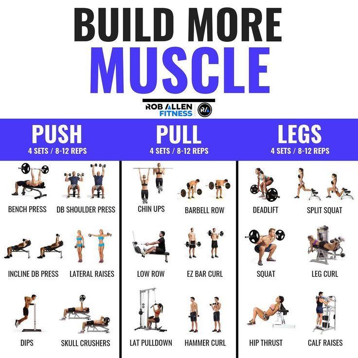 Push / Pull / Beine geteilt: 3-6 Tage Gewichtstraining, Trainingsplan und -plan - #Beine #forlegs #geteilt #Gewichtstraining #Plan #Pull #Push #Tage #Trainingsplan #und #weighttraining