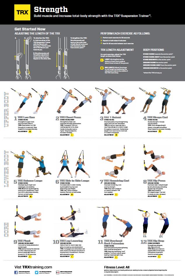 Trx Exercises Pdf : exercises, Julia, Workouts,, Workouts, Routine,, Training