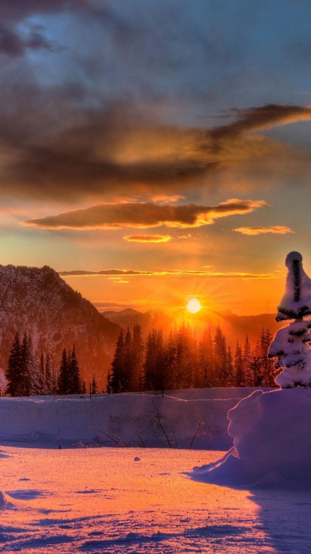 sun, mountains, clouds, snowdrifts, fur-trees, winter
