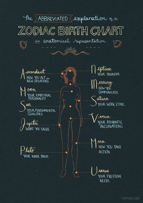 Anatomical Representation Of A Zodiac Birth Chart Sun Mercury