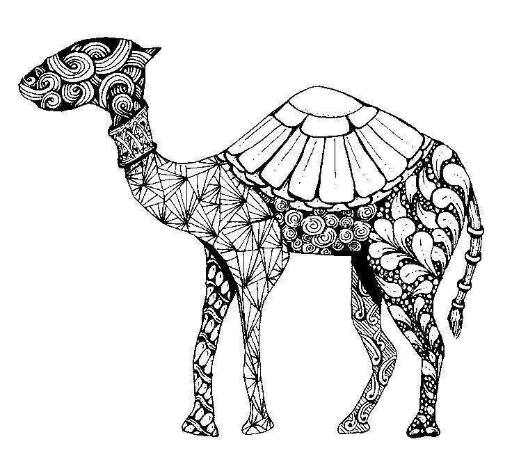 pin von karola friedel auf colouring pages pinterest kamel. Black Bedroom Furniture Sets. Home Design Ideas
