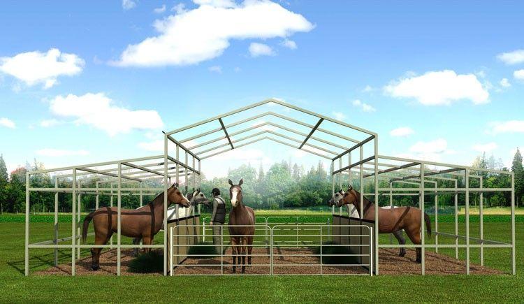 36x21 Raised Center Barn | Small horse barns, Horse barns ...