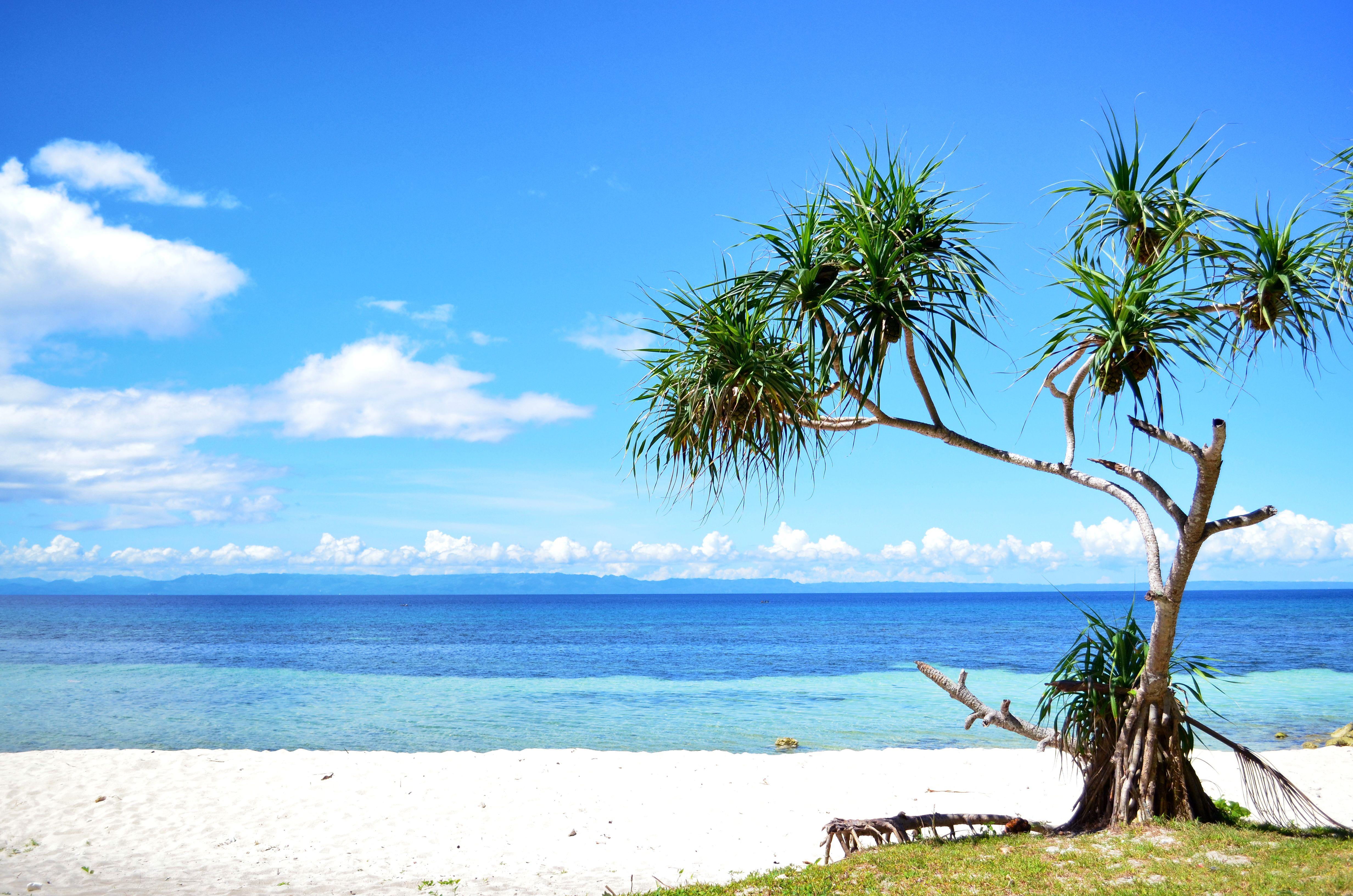 White Sand Beach In Camotes Cebu