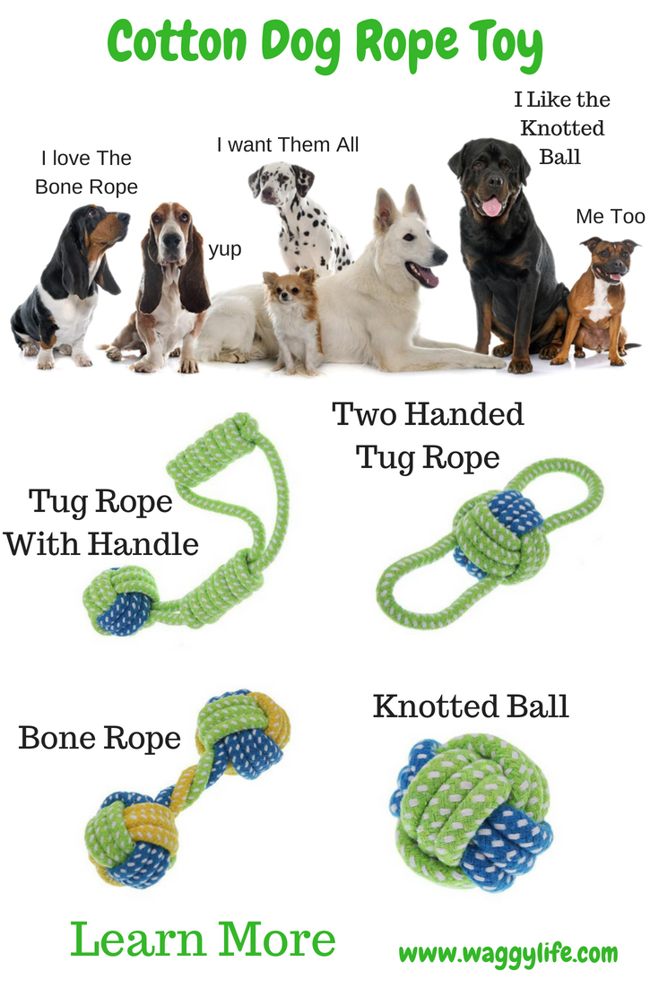 Chew Ropes Are A Necessary Toy For Puppies And Dogs Dogs Need To
