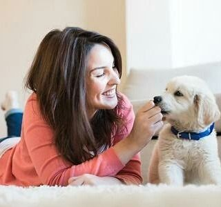 Of course you love your dog? Here are some ideas to show them! #doglove http://buff.ly/2mmzpQc