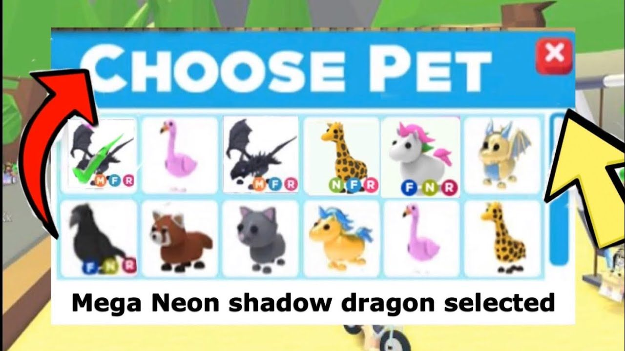 How To Get Free Pets In Adopt Me Youtube Pet Adoption Certificate Pet Dragon Adoption
