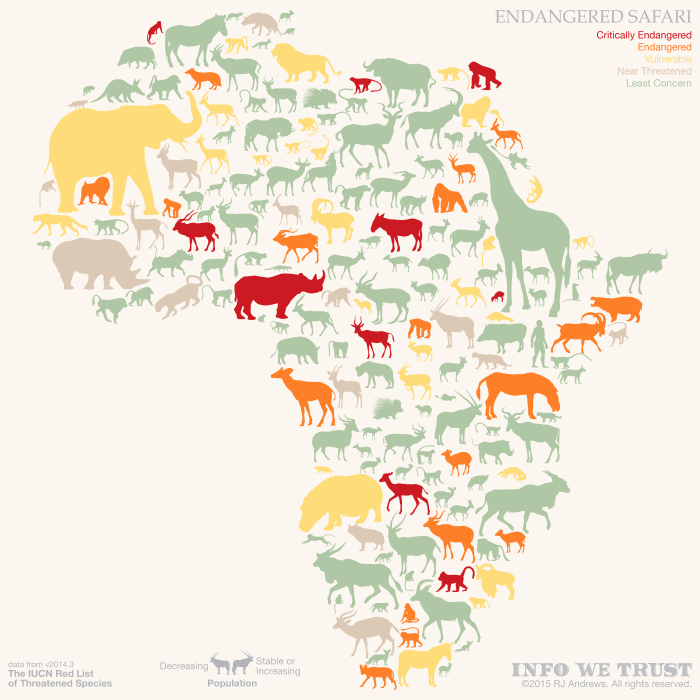 An Interactive African Safari For Endangered Animals Infographic Animal Infographic Endangered Animals Infographic Endangered Animals