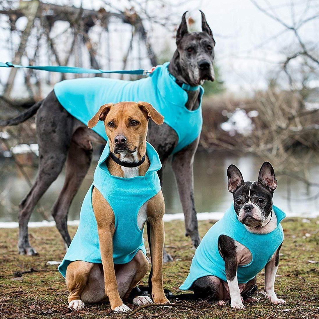 Rc Pet Baseline Fleece Dog Pullover Teal And Orange Pets Dog Clothes Dog Coats
