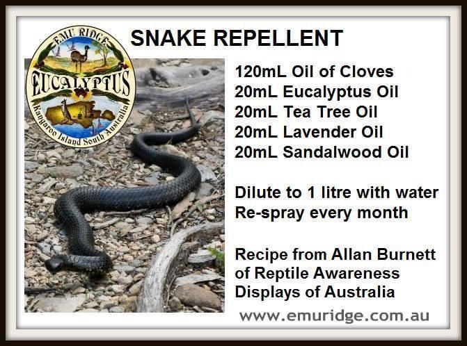 Wonder If This Would Work On Those Portuguese Millipedes Backyard Trees Garden Pests Snake Repellant