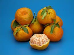 Nutricionista Patrícia Siqueira: Ponkan! a fruta do rejuvenescimento.