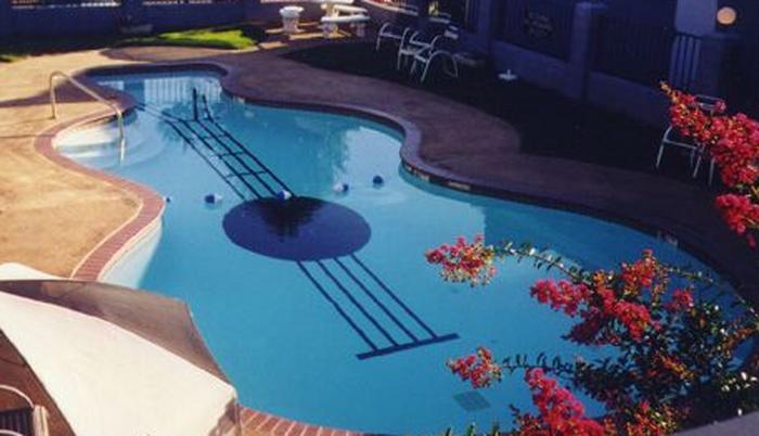 Guitarpool With Beautiful Flowers Guitar Shaped Luxury Swimming Pool Pinterest Luxury