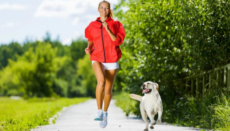 Praticar exercícios apenas duas vezes por semana é o bastante, segundo pesquisa - http://eleganteonline.com.br/pesquisa-aponta-que-praticar-exercicios-apenas-duas-vezes-por-semana-ja-deixa-corpo-mais-saudavel/