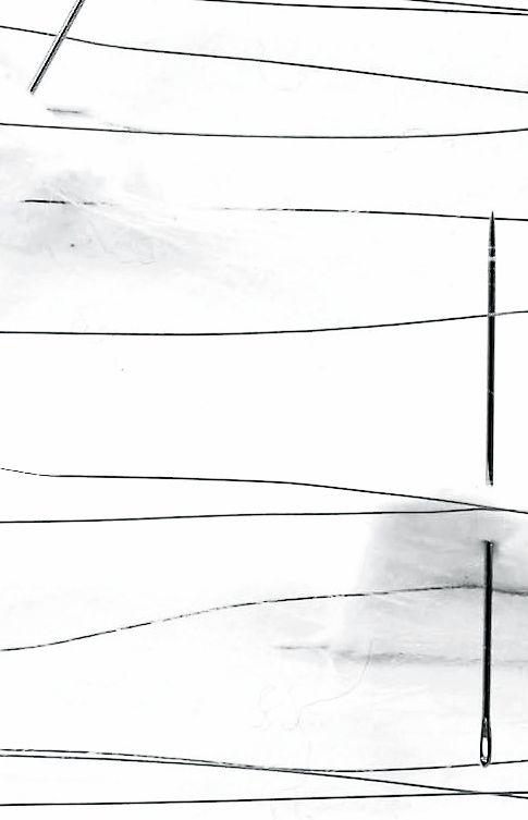 Safâa Erruas   Soft spines, 2010   Needle and metal needles on cotton paper