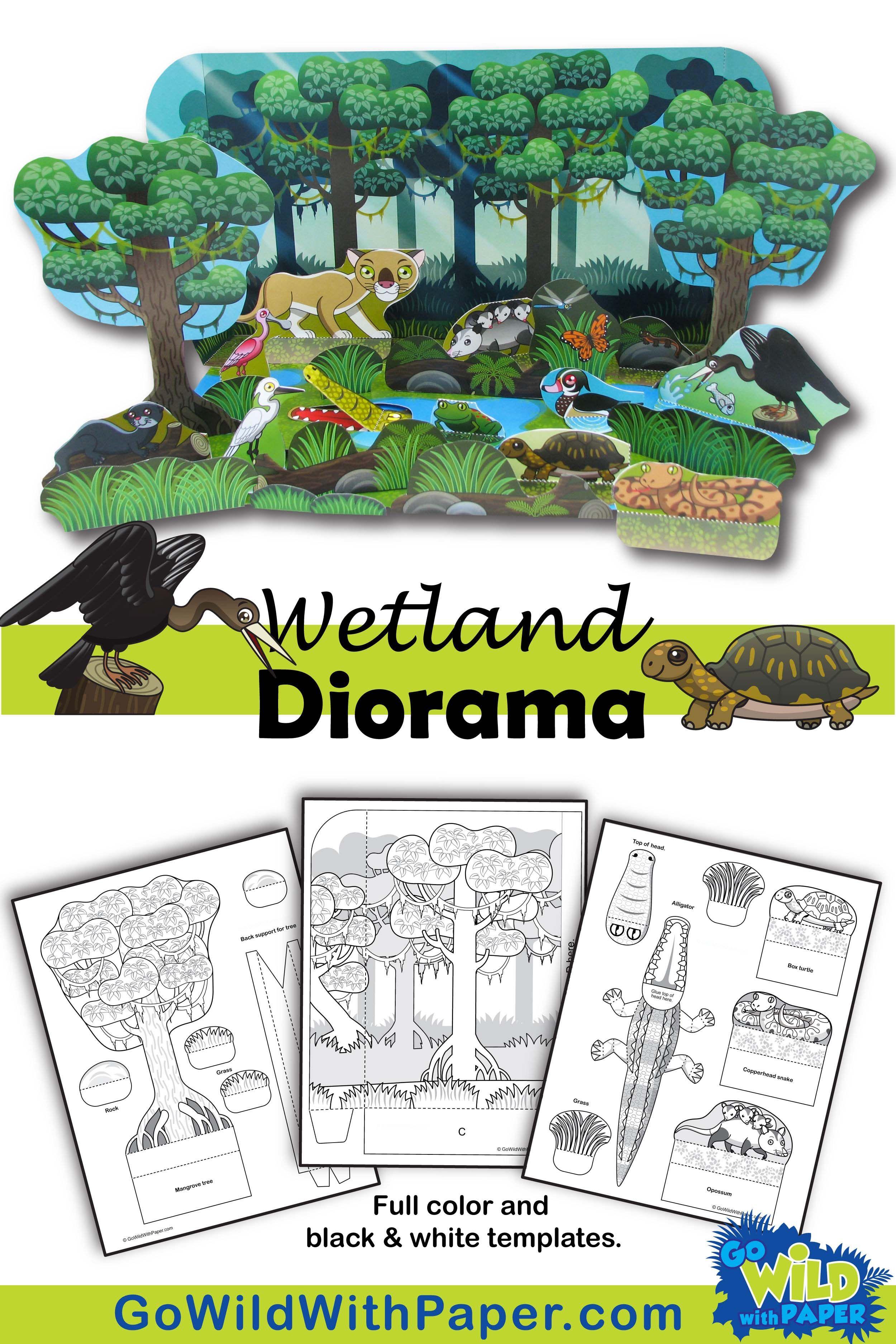 Wetlands Habitat Craft Activity