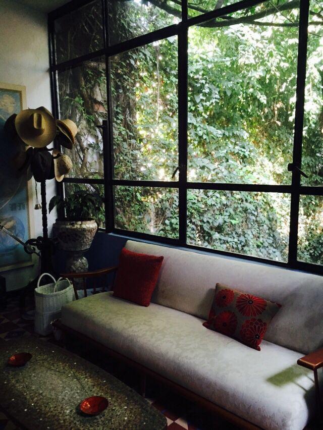 #window #organico #sala