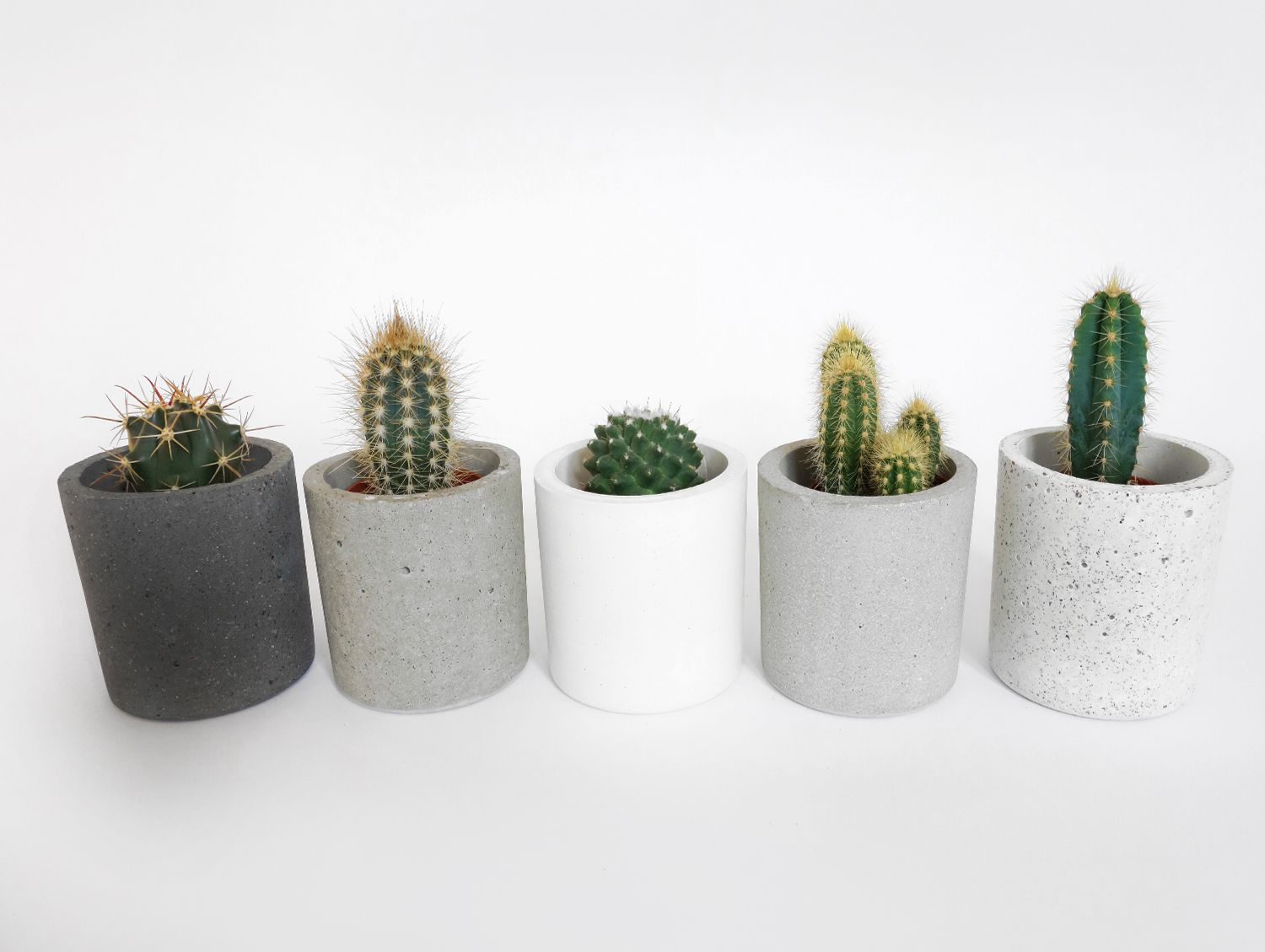 interesting concrete planter. Small round concrete planter  Really Well Made Cool Ideas DIY