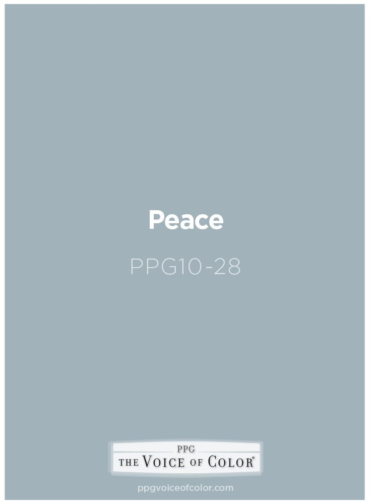 Light blue paint color Peace by PPG Voice of Color