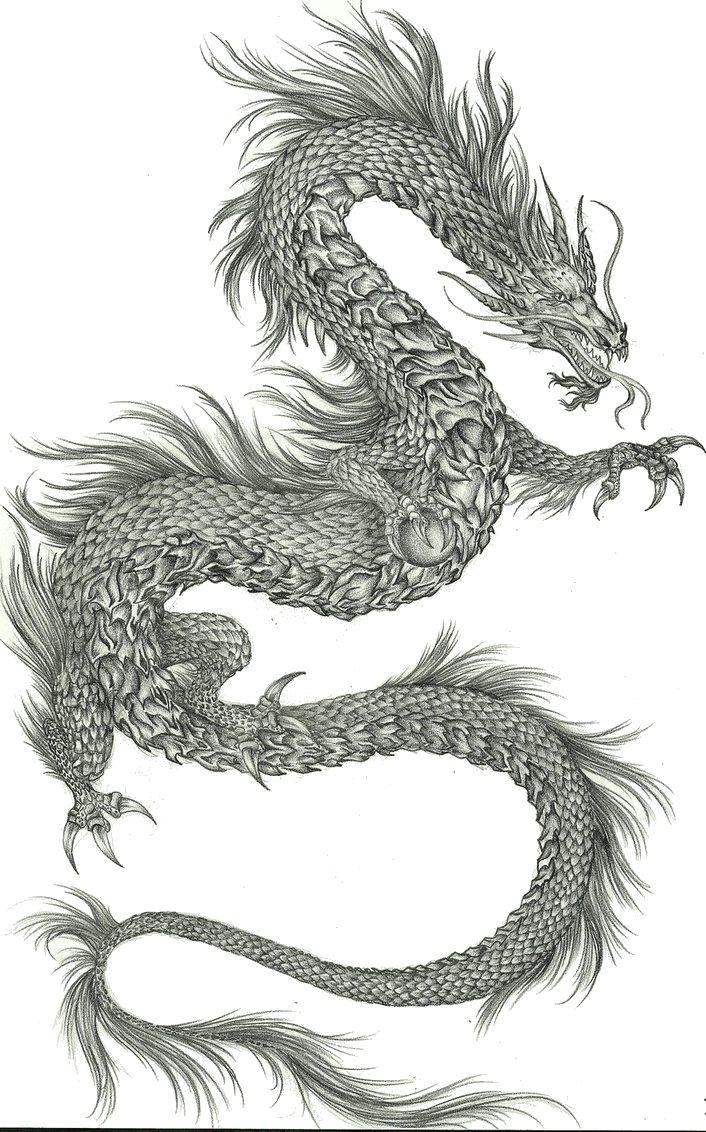 chinesische drachen zeichnen  my blog