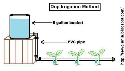 drip irrigation diagram to achieve the drip, i think i can stuff