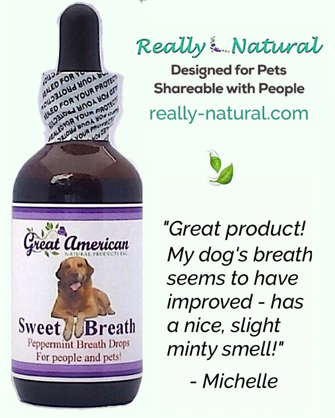 Fast Fresh Minty Breath From Peppermint Essential Oil Plus Reduced Body Odors Over Time Thanks To Chlorop Natural Pet Peppermint Essential Oil Healthy Pets