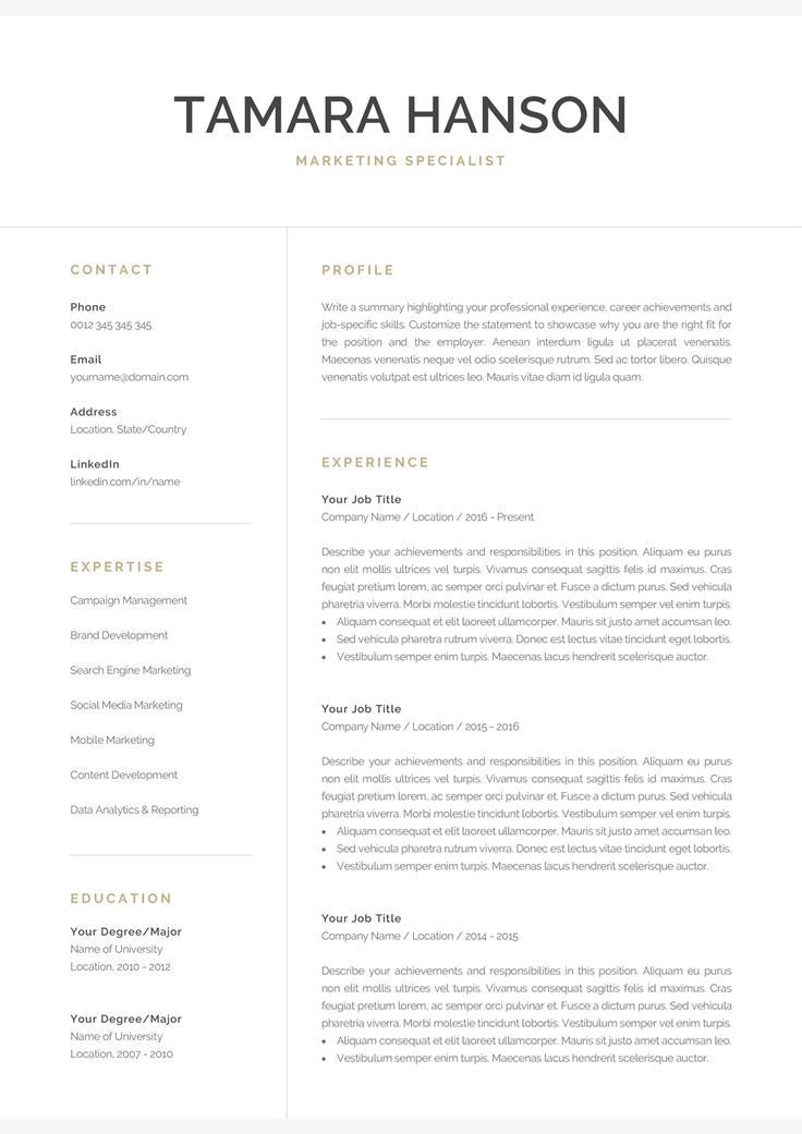 Professional Resume Template for Word & Pages Modern