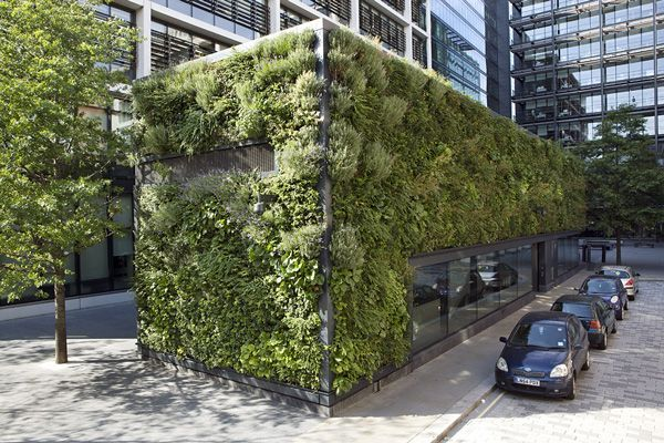 westminster city school green wall - Google Search