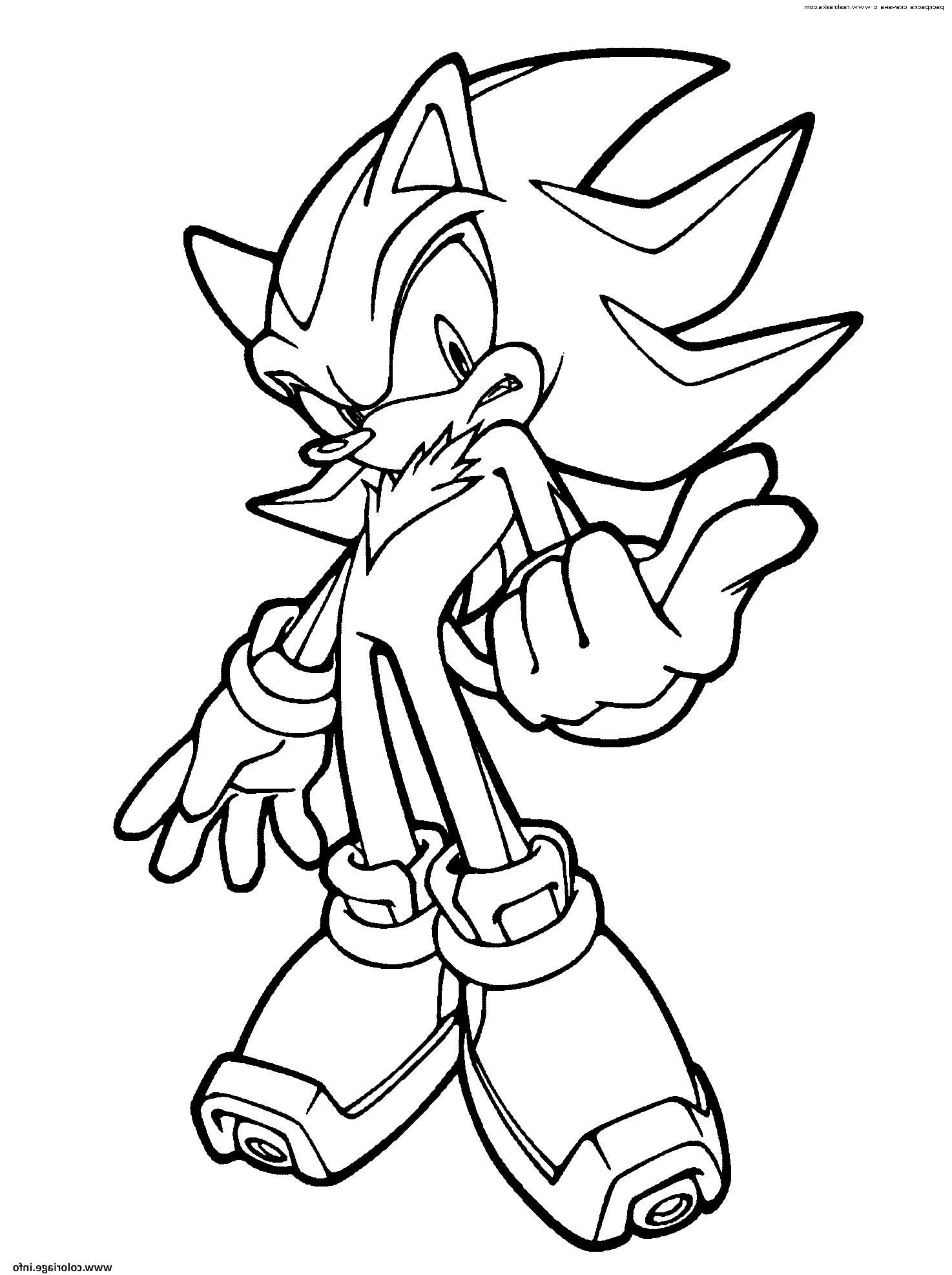 Image Coloriage Sonic De Annie Nicolas Du Tableau Mangas En 2020