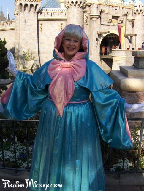 When I grow up I want to be cinderellas fairy godmother in disneyland