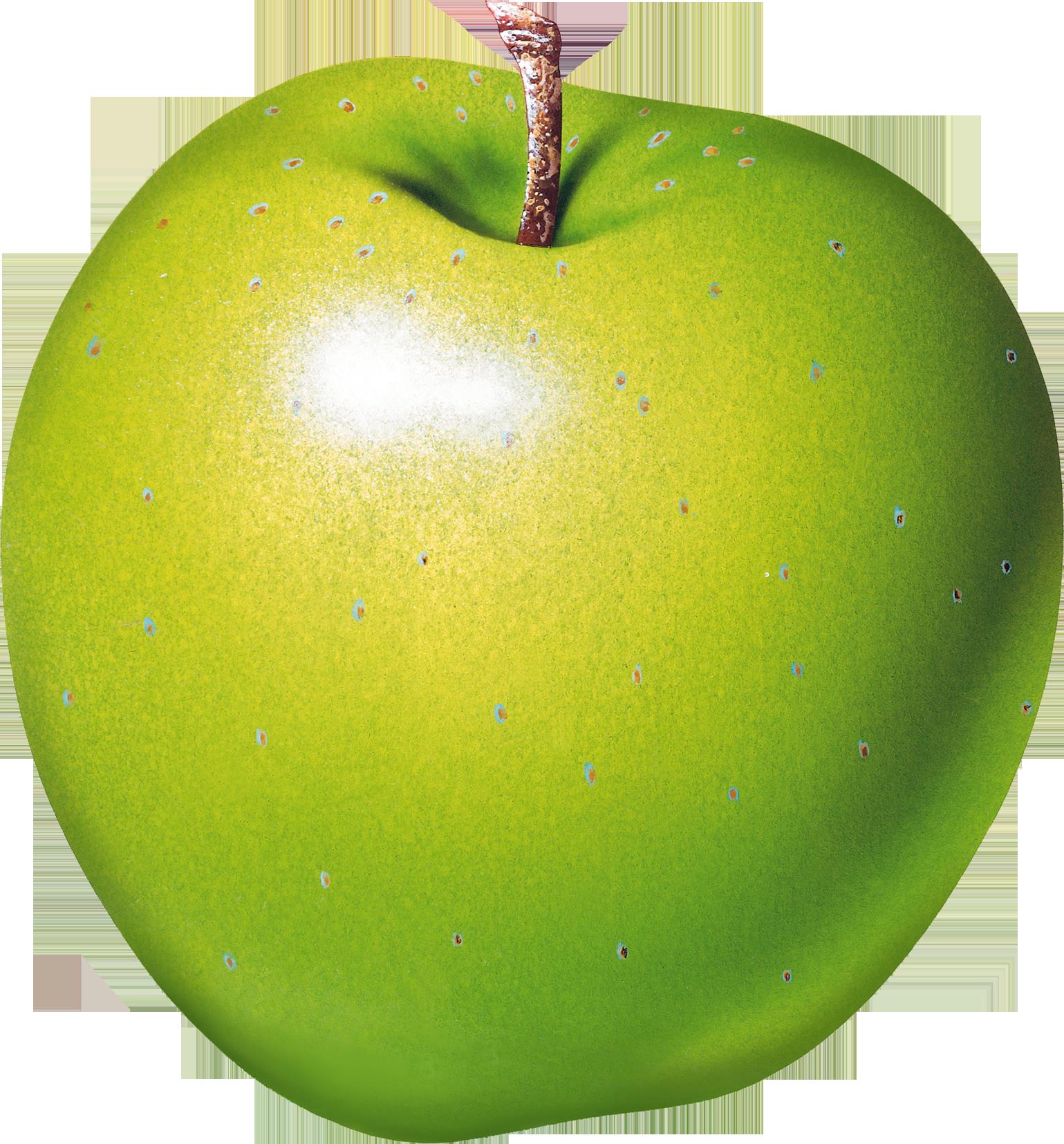 Apple Transparent Image Fruit Clipart Fruit Apple