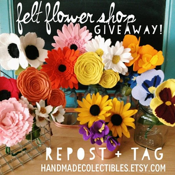 Giving these away on my Facebook + Instagram today. www.facebook.com/handmadeCOLEctibles Ig:@Cole Franke. Don't miss out on these beautiful kid/ pet friendly flowers.